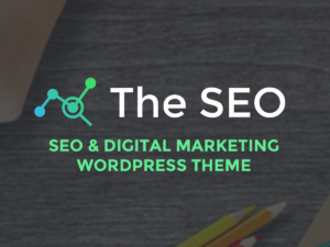 The SEO WordPress Theme Documentation