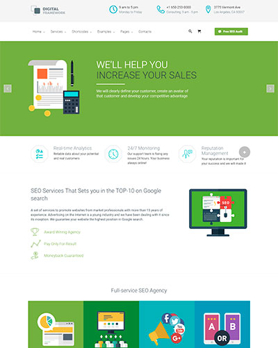 Demo 5: SEO Flat Design WordPress Theme